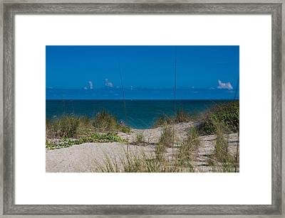 Hutchinson Island Heaven Framed Print by Trish Tritz