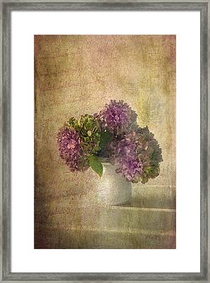 Hydrangea Blossoms Framed Print by Michael Petrizzo