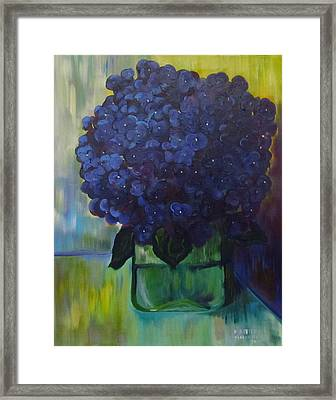 Hydrangeas Framed Print by Dani Altieri Marinucci
