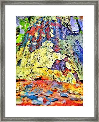 Hydrant 57 Framed Print by Olivier Calas