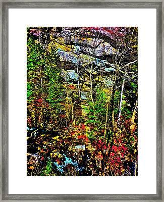 Hyper Grafton 11 Framed Print by George Ramos