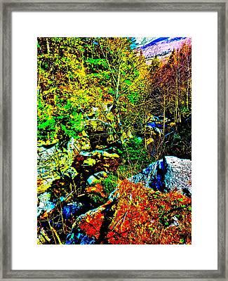 Hyper Grafton 12 Framed Print by George Ramos