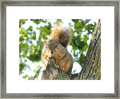 I Am Listening Framed Print by Dennis Leatherman