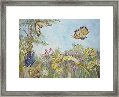 I Am Not A Worm Framed Print by Dorothy Herron