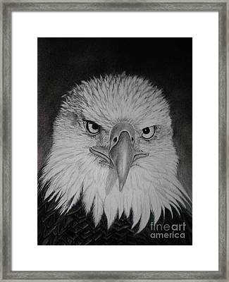 I Am Watching You Framed Print by Paula Ludovino