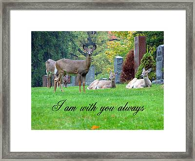 I Am With You Always Framed Print