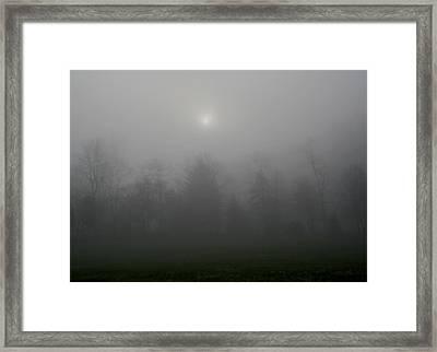 I Awoke In A Dream Framed Print