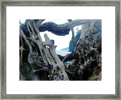 I Came From Out There Framed Print by George Cousins