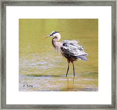 Framed Print featuring the photograph I Hate Being Wet by Roena King
