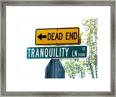 I Hope Not Framed Print by Rory Sagner