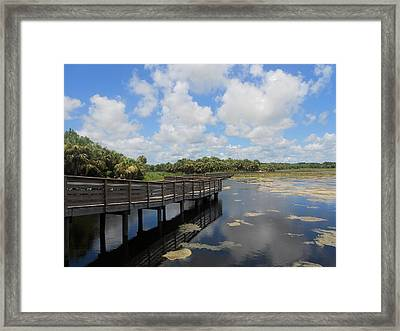 I Know A Place Framed Print by Sheila Silverstein