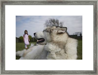 I Know Your There Framed Print by Christopher Rowlands