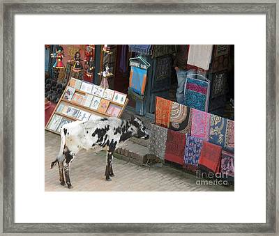 Framed Print featuring the photograph I Like The Red One by Louise Peardon