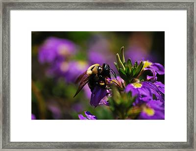 I Love My Job Framed Print by Lori Tambakis