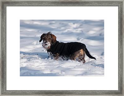 Framed Print featuring the photograph I Love Snow by Andrew  Michael