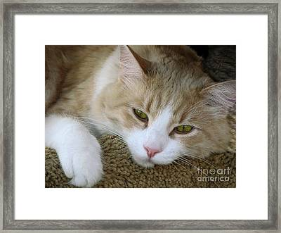 I Miss You Framed Print by Ellen Cotton