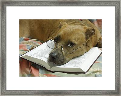 I Read My Bible Every Day Framed Print by Renee Trenholm
