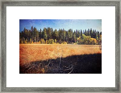 I Roam Framed Print by Laurie Search