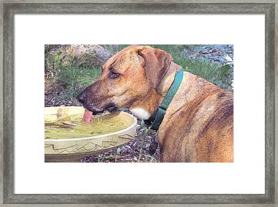 I Run Therefore I Thirst Framed Print by Patty Gross