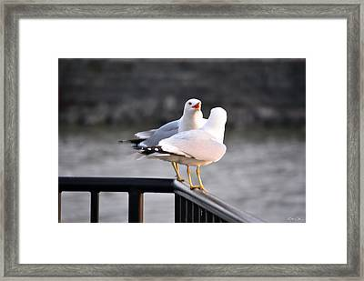 I Told You   Im Tired Of Fish Damnit Framed Print by Michael Frank Jr