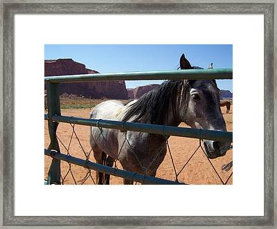 Framed Print featuring the photograph I Want To Break Free by Dany Lison