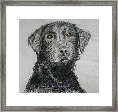 I Want To Play Framed Print by M Valeriano