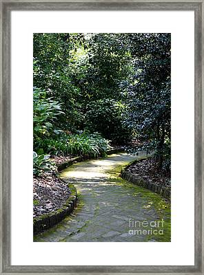 I Want To Walk With You Framed Print by Maria Urso