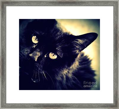 I Want Your Love Framed Print