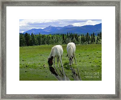 I Was So Thirsty Framed Print
