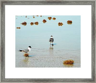 I Will Follow You Framed Print
