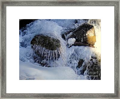 Ice Candy Framed Print by Nika One