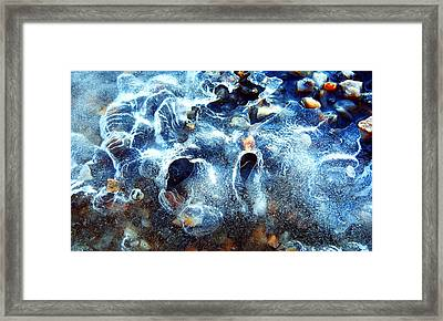 Ice Doggy Face Framed Print by Mikko Tyllinen