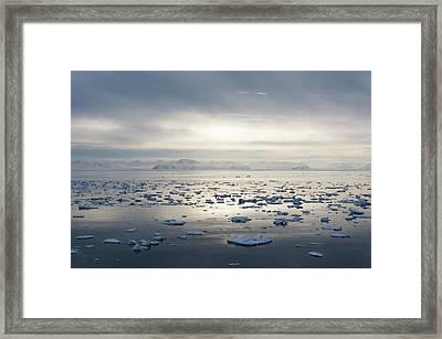 Ice Floating In Isfjorden Framed Print