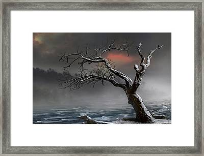 Ice Floes Framed Print by Igor Zenin