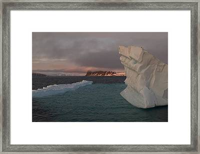 Ice Formations Float In Blue Water Framed Print by Norbert Rosing