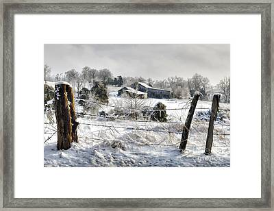 Ice Storm - D004825a Framed Print by Daniel Dempster