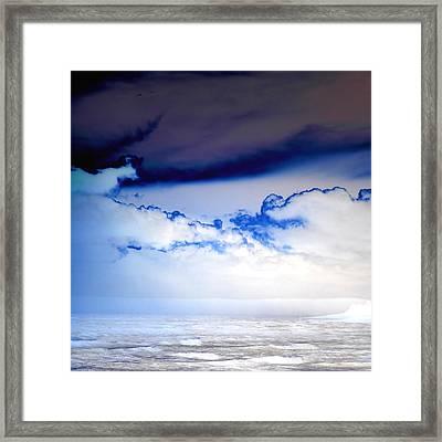 Ice Storm Framed Print by Sharon Lisa Clarke