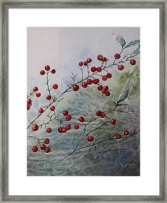 Iced Holly Framed Print