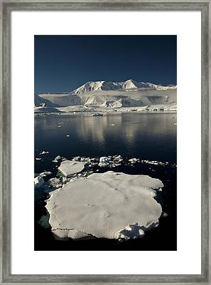 Icefloe In The Neumayer Channel Framed Print by Colin Monteath