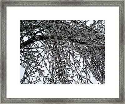 Icey Shield Framed Print by Joshua Dwyer