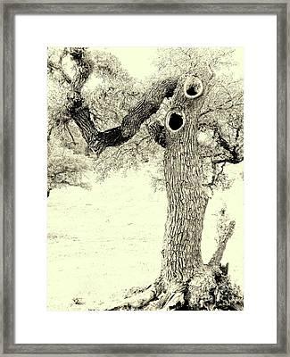 Ichabod Lane Framed Print