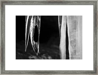 Icicle Framed Print