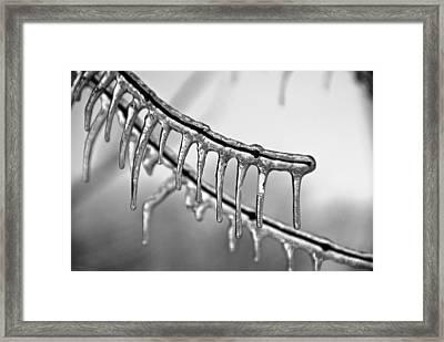 Icy Fingers Framed Print by Jen Morrison