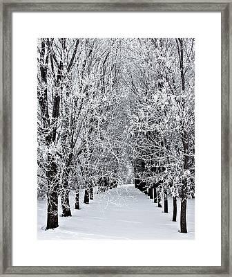 Icy Gateway Framed Print