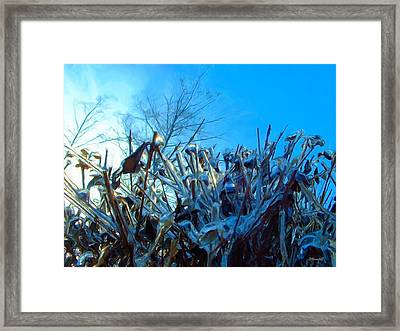 Framed Print featuring the digital art Icy Shell by Dennis Lundell