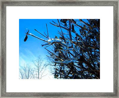 Framed Print featuring the photograph Icy Trim by Dennis Lundell