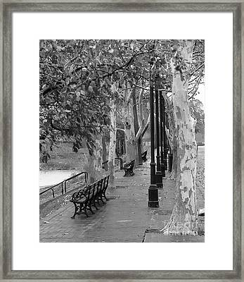 Ides Of March Movie Locale Framed Print by David Bearden