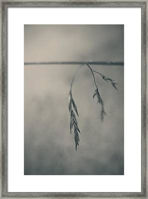 If You Lost Your Love For Me Framed Print by Laurie Search