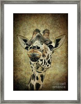 If You've Got It...flaunt It Framed Print