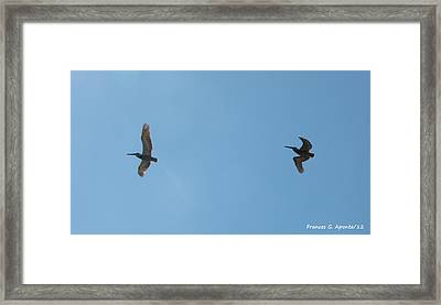 II Want To Be Free Framed Print by Frances G Aponte